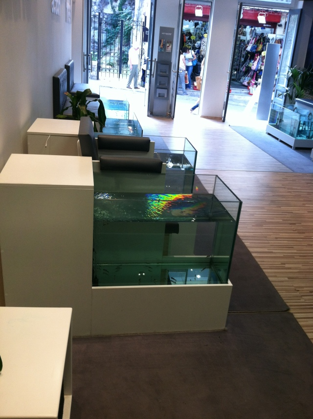 Dr. Fish Spa